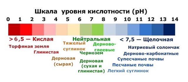 Уровень кислотности от типа почвы