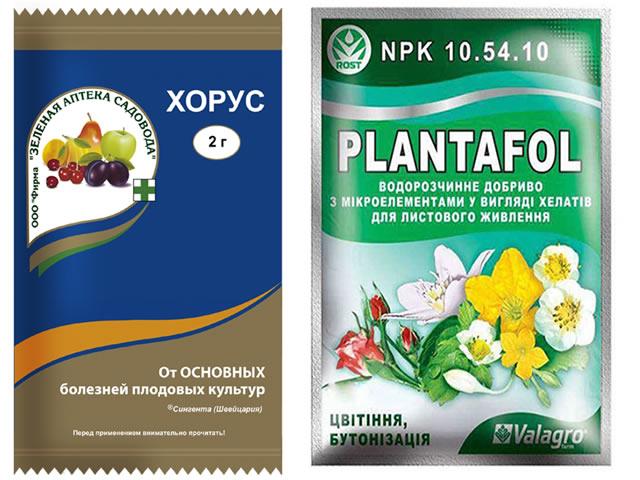 Препараты Хорус и Плантафол для обработки клубники Купчиха