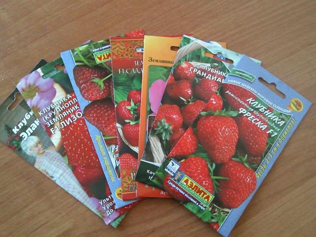 Семена клубники, встречающиеся в продаже