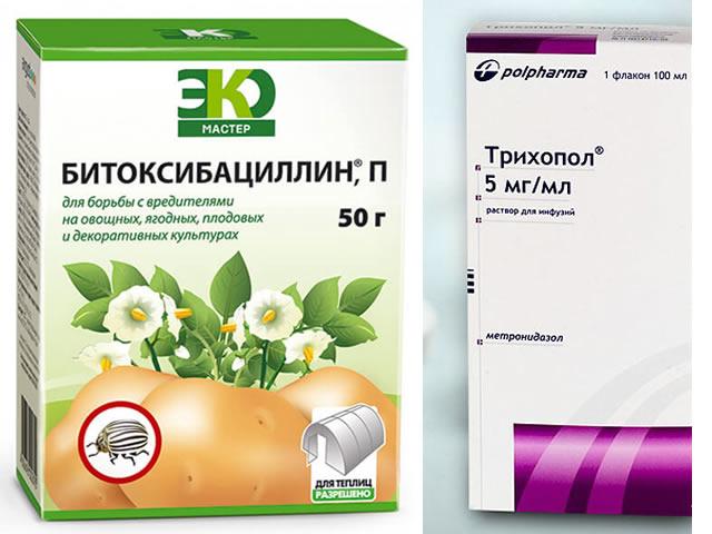 Битоксибациллин и Трихопол для защиты Королевы Елизаветы-2 от болезней и вредителей