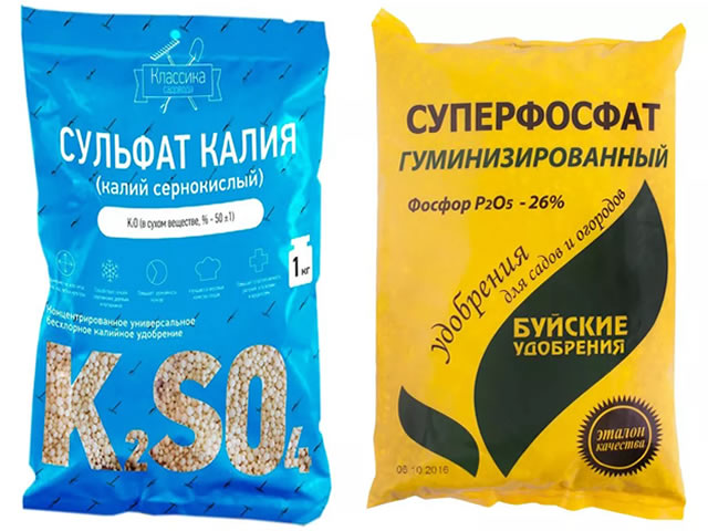 Суперфосфат и сульфат калия для подкормки клубники Московская юбилейная