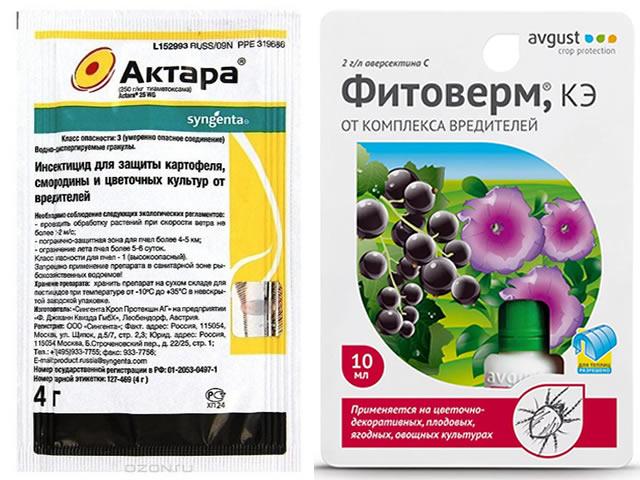 Обработка клубники Машенька от болезней и вредителей препаратами Актара и Фитоверм