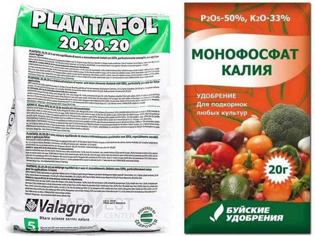 Плантафол и монофосфат калия для подкормки клубники
