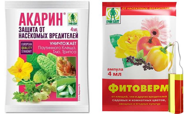 Акарин и Фитоверм для защиты клубники от вредителей и болезней