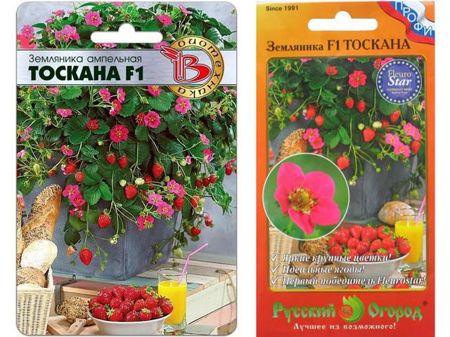Семена садовой земляники Тоскана