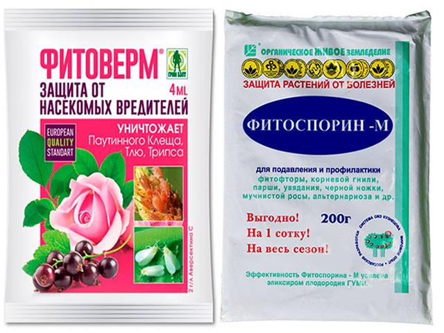 Фитоверм и Фитоспорин - био-препараты от болезней и вредителей на клубнике