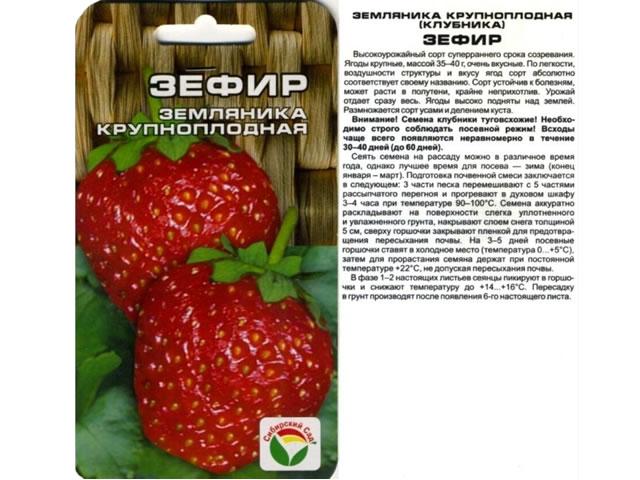 Семена крупноплодной земляники Зефир