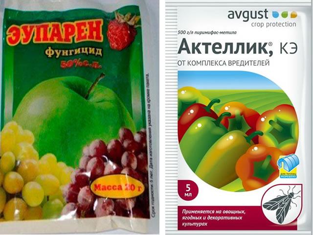 Эупарен и Актеллик для защиты садовой земляники Русский размер от вредителей и болезней