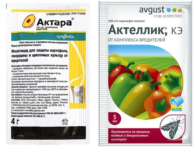 Пктара и Актеллик для борьбы с белокрылкой