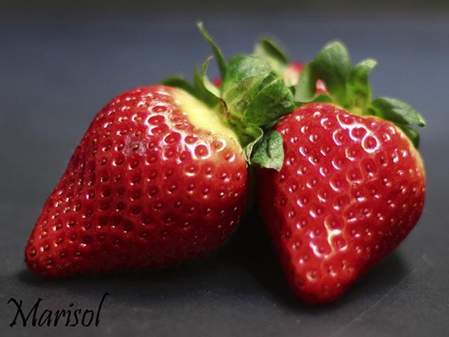 Крупные ягоды клубники сорт Марисоль