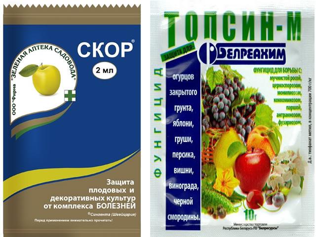 Препараты Скор и Топсин-М для борьбы с бурой пятнистостью листьев клубники