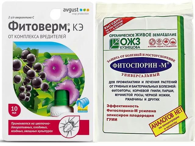 Фитоверм и Фитоспорин для борьб с болезнями и вредителями клубники