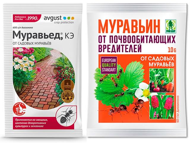 Муравьин и Муравьед от муравьев на клубники