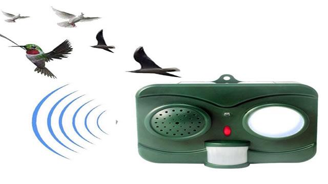 Электронное устройство для защиты клубники от птиц