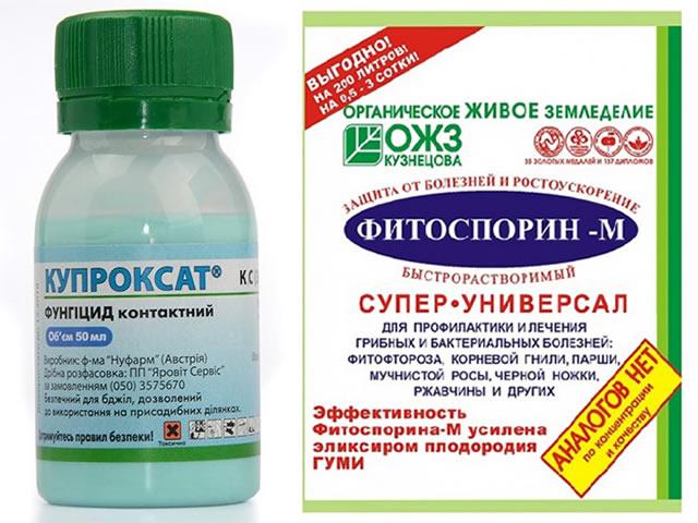 Купроксат и Фитоспорин-М от мучнистой росы на клубнике