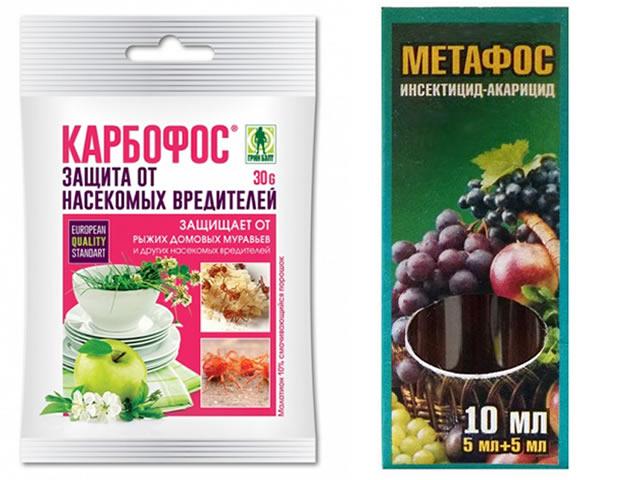 Карбофос и Метафос для защиты клубники от вредителей