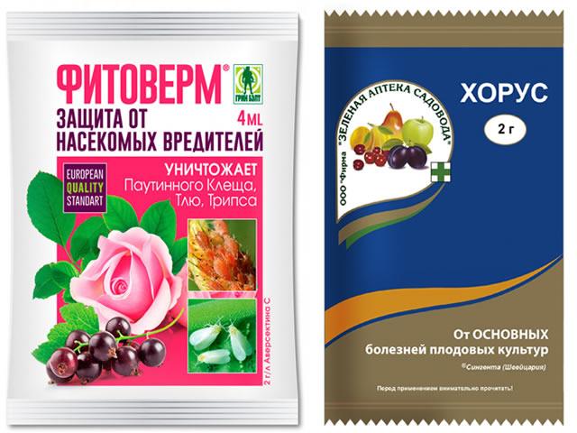 Фитоверм и Хорус для защиты клубники от болезней и вредителей