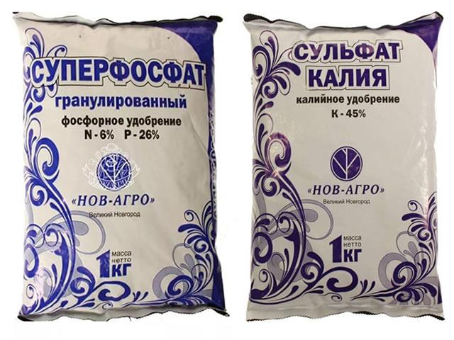 Суперфосфат и сульфат калия для подкормки клубники