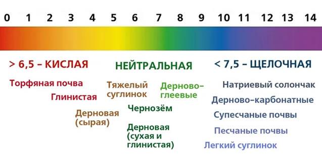 Уровень кислотности в зависимости от типа почвы